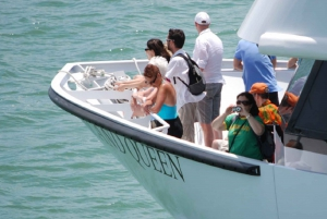 Miami: Biscayne Bay Sightseeing Boat Tour