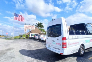 Miami: City Tour and the Everglades in a Convertible Bus