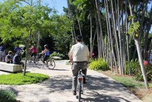 Miami: Full-Day Bike Rental