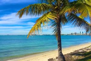 Miami: Hobie Cat Sailing