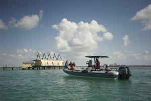 Miami: Private Sightseeing Boat Tour
