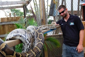 Sawgrass Park: Private 1-Hour Airboat Adventure Tour