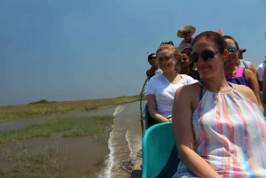 Wildlife Show & Everglades Motorboat Ride with Hotel Pickup