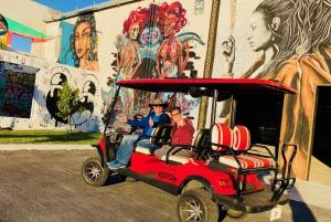 Wynwood Art District: 1-Hour Buggy Street Art Tour