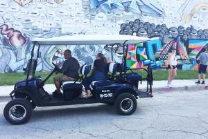 Wynwood Art District 1-Hour Street Art Tour by Golf Buggy