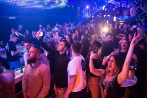 Nightclub Beagle