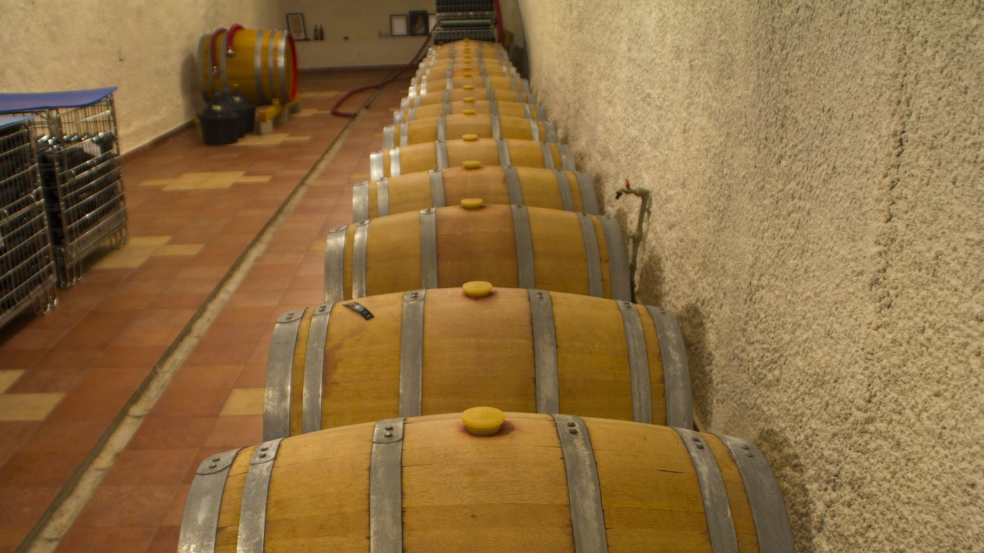 Winery Vucinic - Zenta