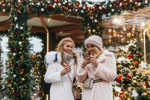 Moscow: Christmas Magic Private Tour