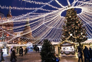 Moscow: Full-Day Winter Fairy-Tale Tour