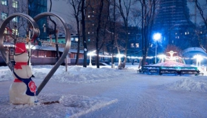 Skating rink in Hermitage Garden