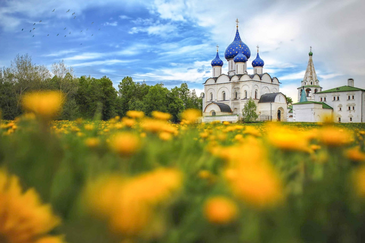 Suzdal & Vladimir Golden Ring of Russia Private 1-Day Tour