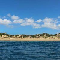 1. Sava dunes Beach Lodge