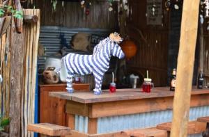 Blue Zebra Bar