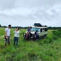 Mabeco Tours - Day Tours