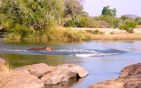 Niassa National Game Reserve
