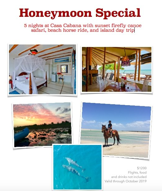 Honeymoon Special!