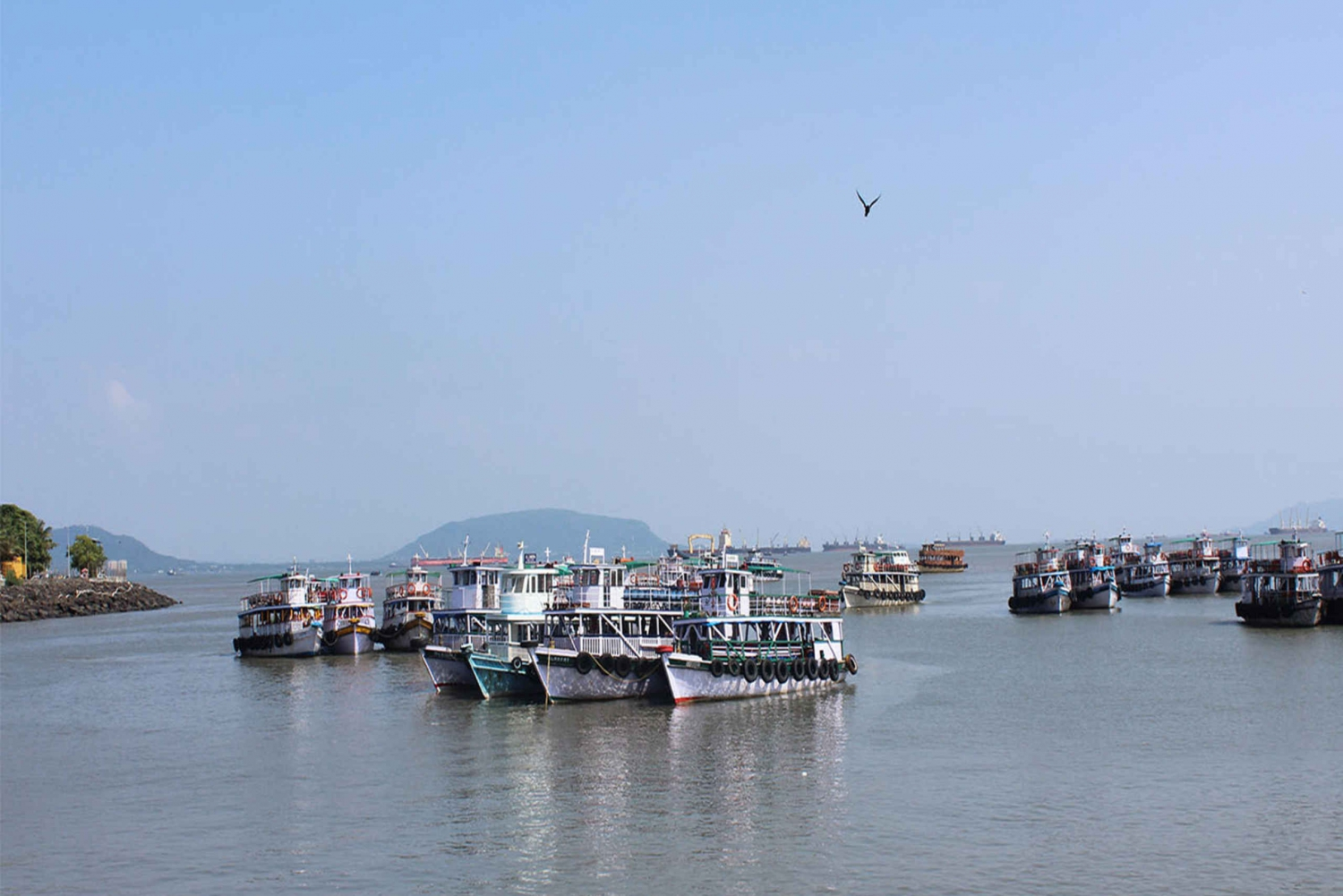 From Full-Day Elephanta Caves Tour