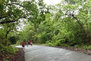 From Mumbai: Sanjay Gandhi Park Safari & Kanheri Caves Tour