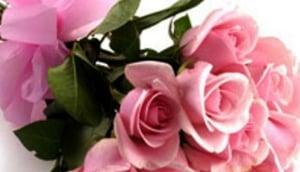 India Florist Direct