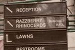 Razzberry Rhinoceros