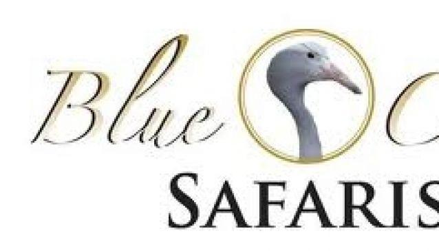 Blue Crane Safaris