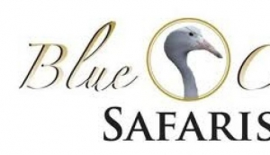 Blue Crane Safaris