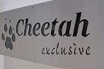 Cheetah Tours and Safaris