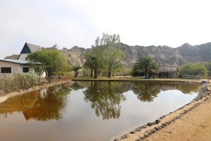 Goanikontes Oasis Rest Camp
