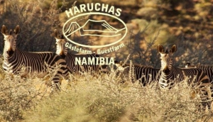 Haruchas Guest Farm