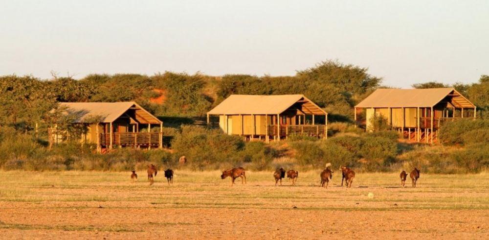 Intu Afrika: Suricate Kalahari Tented Lodge