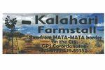 Kalahari Farmstall & Chalets
