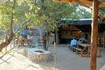 Mopane Tented Camp