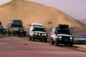Self-Drive Namib Desert Adventure to Sandwich Bay