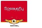 Sossusfly