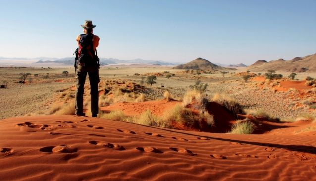 Best Things To Do in Namibia