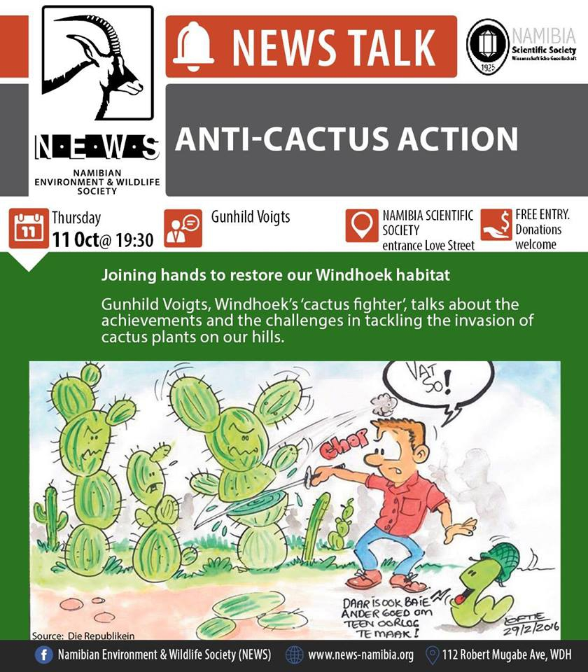 Anti-Cactus Action Talk