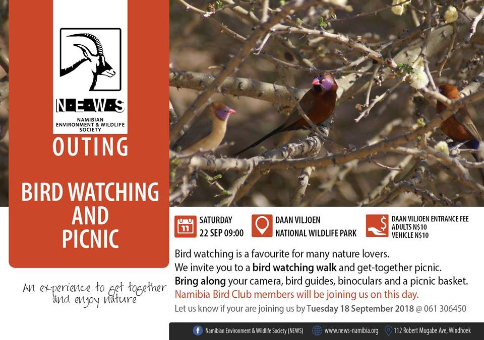 Bird Watching with Namibian Environment and Wildlife Society