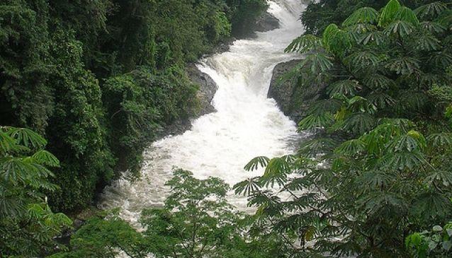 Kwa Falls, Cross River State