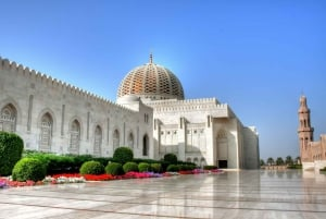 From Muscat: Private Customized Tour with Car and Driver