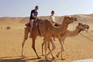 From Muscat: Private Desert Safari with Camping Overnight