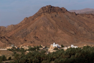 From Muscat: Red Dunes and Wadi Safari with Lunch
