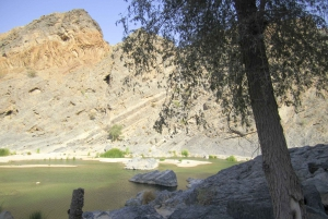 Full-Day Coastal Delights Tour from Muscat