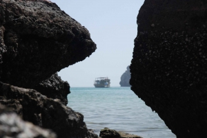 Musandam Dibba Full-Day Cruise with Lunch from the UAE