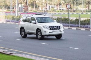 Muscat: Charter Transfer with Private Driver
