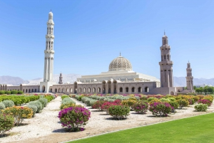 Muscat: City Tour of Grand Mosque, Old Souqs, Museum, & Fort