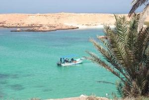 Muscat: Damaniyat Islands SCUBA Diving Trip