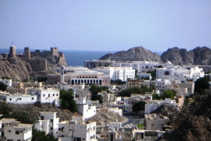 Muscat: Half-Day City Sightseeing Tour & Grand Mosque Visit