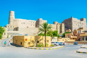 Muscat: Nizwa Oasis Full Day Tour with Lunch