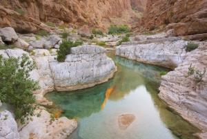 Muscat: Wadi Shab Trek and Coastal Tour