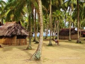Aguja Island-Icodub